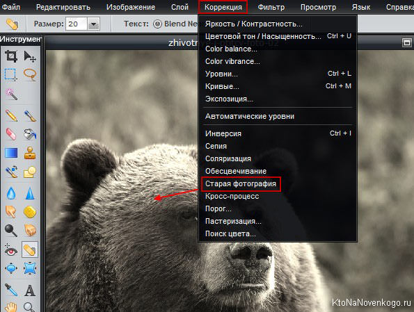 Бесплатное онлайн редактирование фото с наложением эффектов