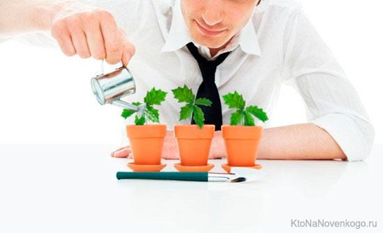 Поливка растений