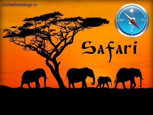 Safari — где скачать и как настроить под себя бесплатный браузер для Windows от Apple