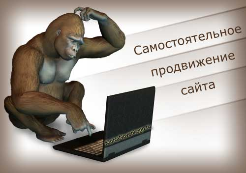 Ироничное изображение раздумий на тему продвижения своего сайта