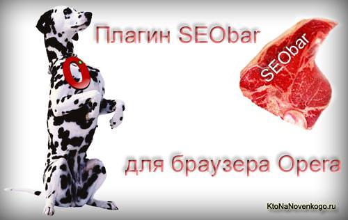 SEObar — удобный и информативный SEO плагин для Оперы