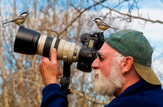 Фотограф снимает птиц в лесу
