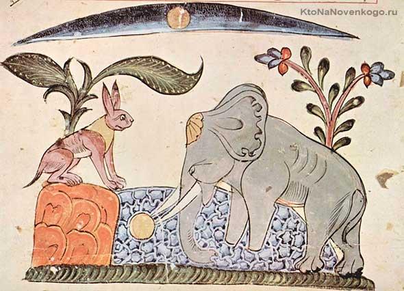 Слон и заяц