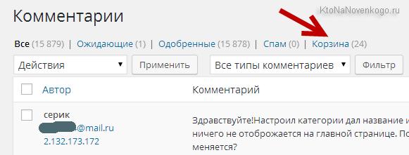 Спам отсеянный reCAPTCHA попадает в корзину WordPress