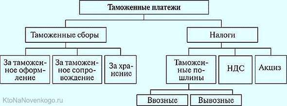 Cтруктура таможенных платежей