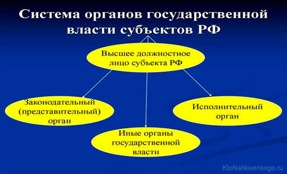 Система органов