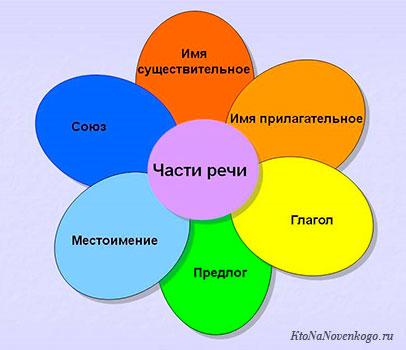 Что такое части речи – из чего состоят предложения