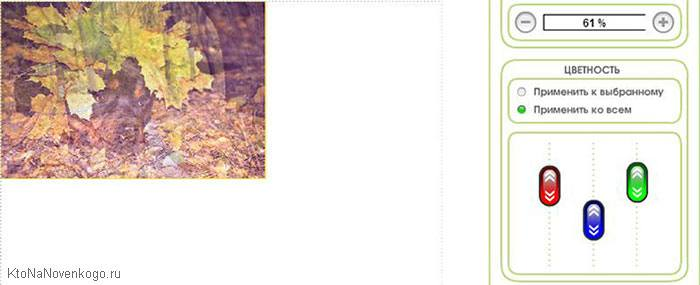 Настраиваем цветность склеиваемого в онлайн-редакторе фото