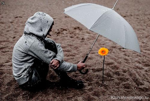Цветок под зонтиком