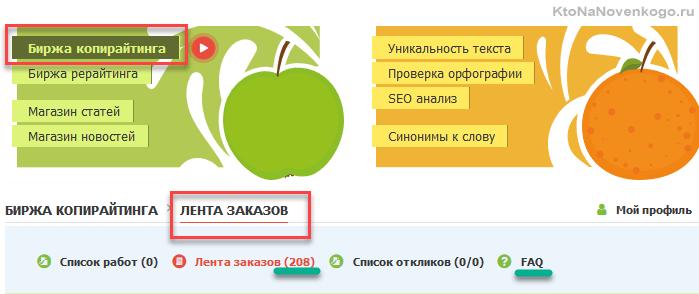 Лена заказов на бирже копирайтинга Текст.ру