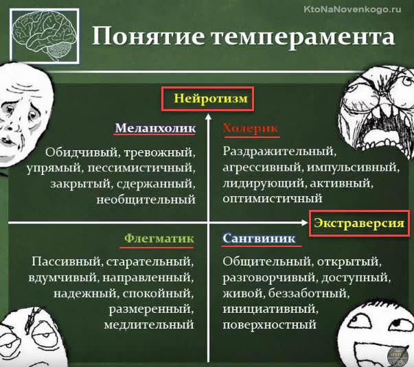 Тип темперамента человека
