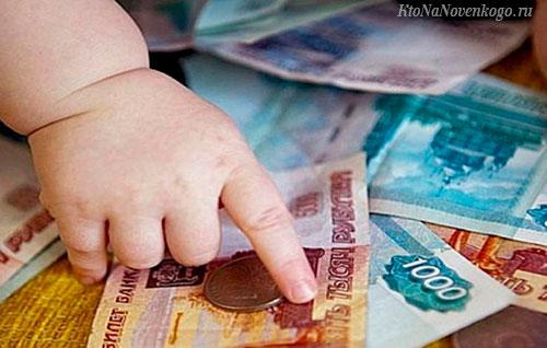 Куда можно потратить (на что использовать) материнский капитал