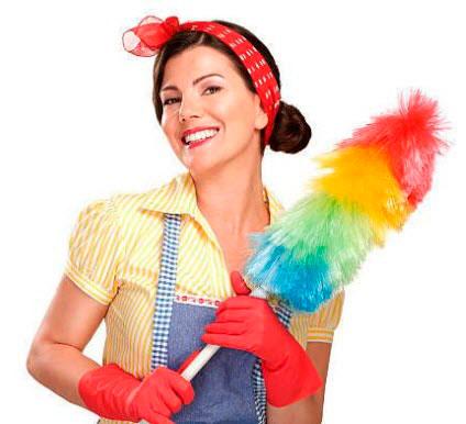 Домохозяйка с пипидастром в руках