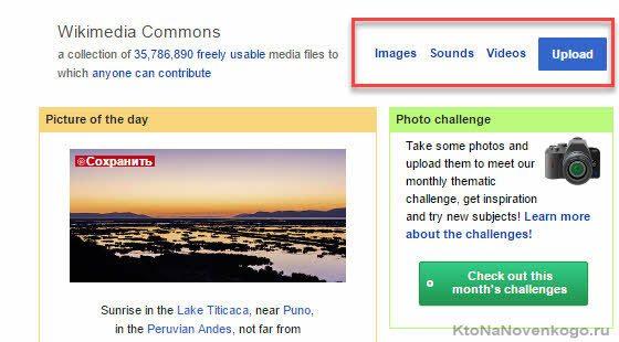 Огромная база бесплатных фотографий в викимедиа