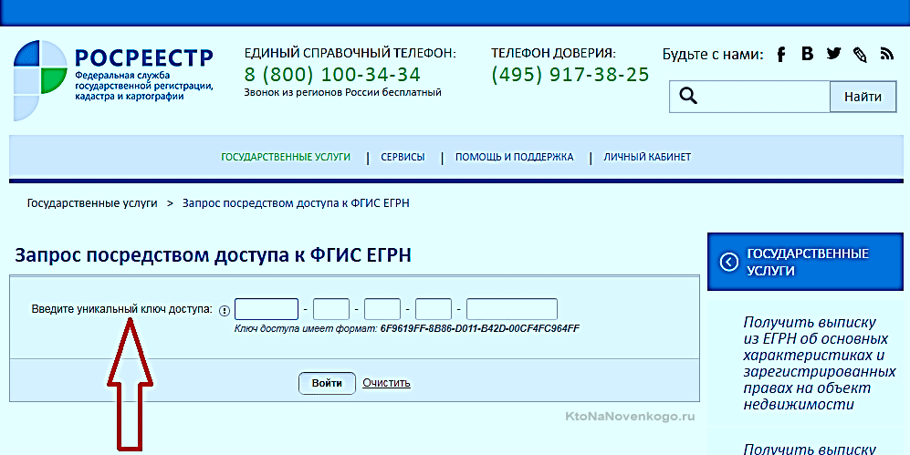 выписка из егрип через личный кабинет