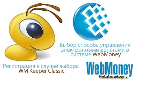 Коллаж из логотипов Вебмани