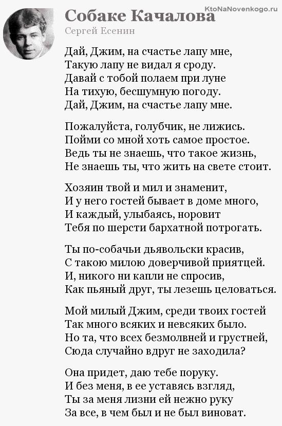 Смысловая законченность стиха
