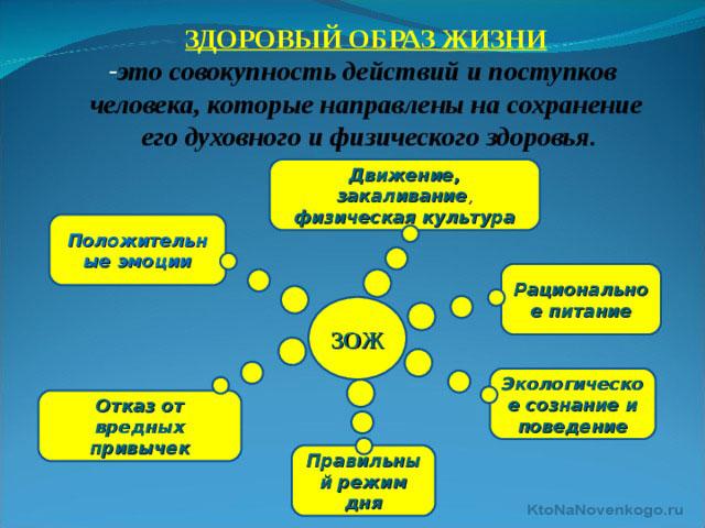 cdcedeb2920e Здоровый образ жизни (ЗОЖ) — что это такое   KtoNaNovenkogo.ru