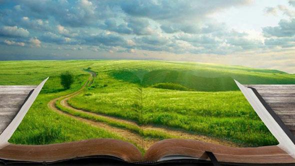 Луг и дорога на странице книги