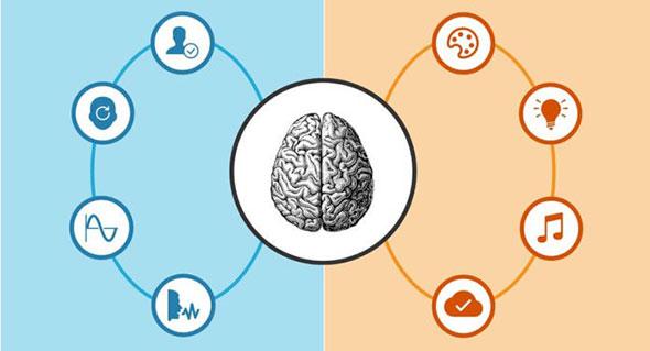 Мозг перегружен инфографикой